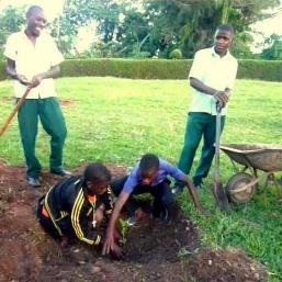 eco-schools pic